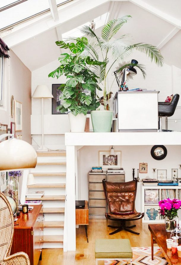 Fiddle Leaf Fig Inspiration And 15 Pretty Planters A Bit