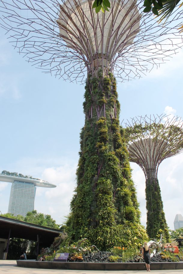 A Bit of Bees Knees | Singapore and Bali